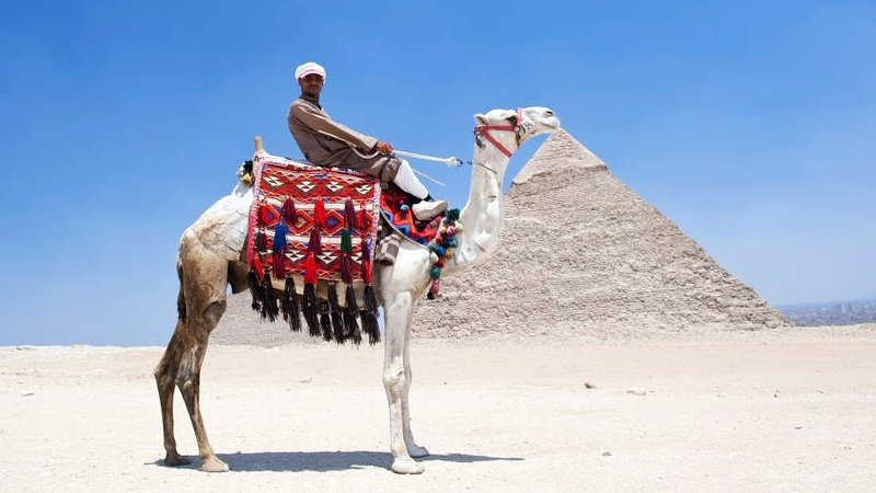 Camel rider in fron of Pyramids.jpg