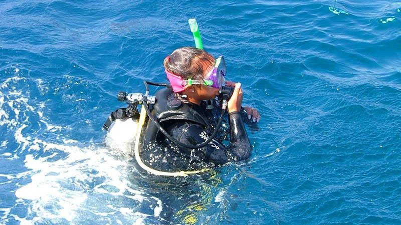 diver-red-sea-egypt.jpg