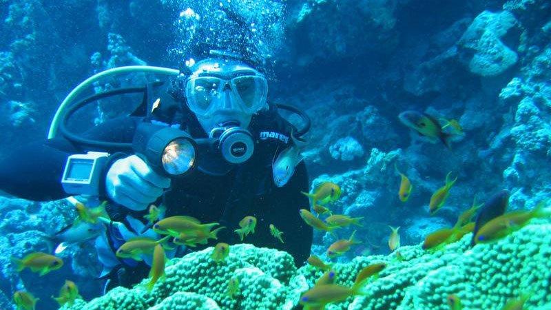 diver-red-sea-egypt.jpg
