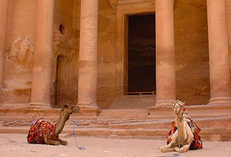 Petra camel ride