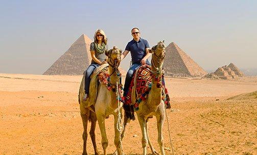 camels-pyramid-egypt.jpg